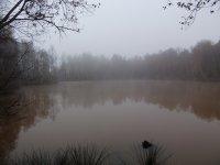 """Herbststimmung am Teglinger See """"Mörken"""""""